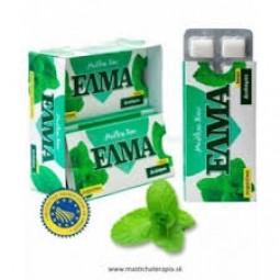 ELMA mastichový žvýkačky máta, dražé 10 ks