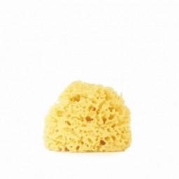 EatGreen Mořská tráva - malá houbička