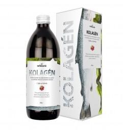 KOLAGEN (hydrolyzovaný kolagen s elastinem, příchuť červených hroznů 500 ml)