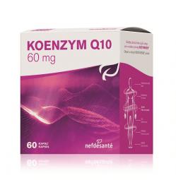 KOENZYM Q10 60 mg (cps 6x10 (60 ks))