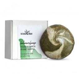 BalancoShamp - tuhý šampon na mastné vlasy