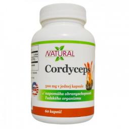 Cordyceps 500 mg - 60 kapslí