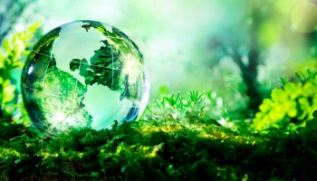 5 krát o ekologickém mytí v myčce
