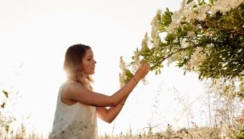 Jaké bylinky sbírat v květnu a jejich účinky