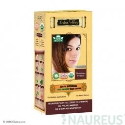100% Rostlinná, 100% Organická barva na vlasy Kaštanově hnědá