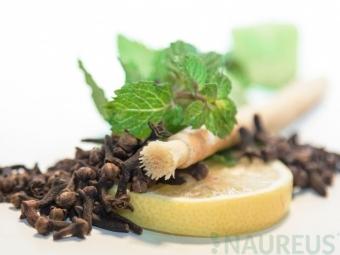 Přírodní zubní kartáček Siwak Máta
