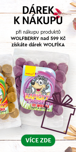 Wolfberry wolfik zadarmo